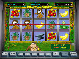 gaminator slots dolphins pearls deluxe